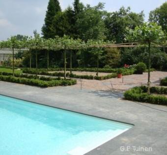 Leveren van bomen en hagen